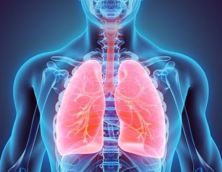Lung cancer awareness month - learn the signs so you're ready to take action
