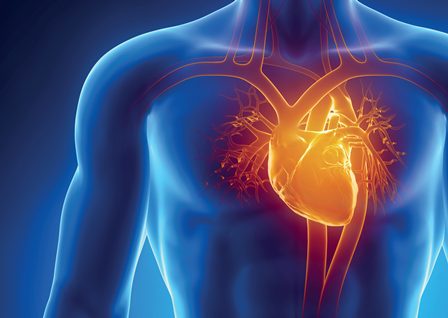 Ask the Expert: Heart palpitations