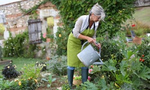 Top tips to protect your back when gardening