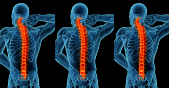 'Meet the experts' - Chronic back and neck pain information evening