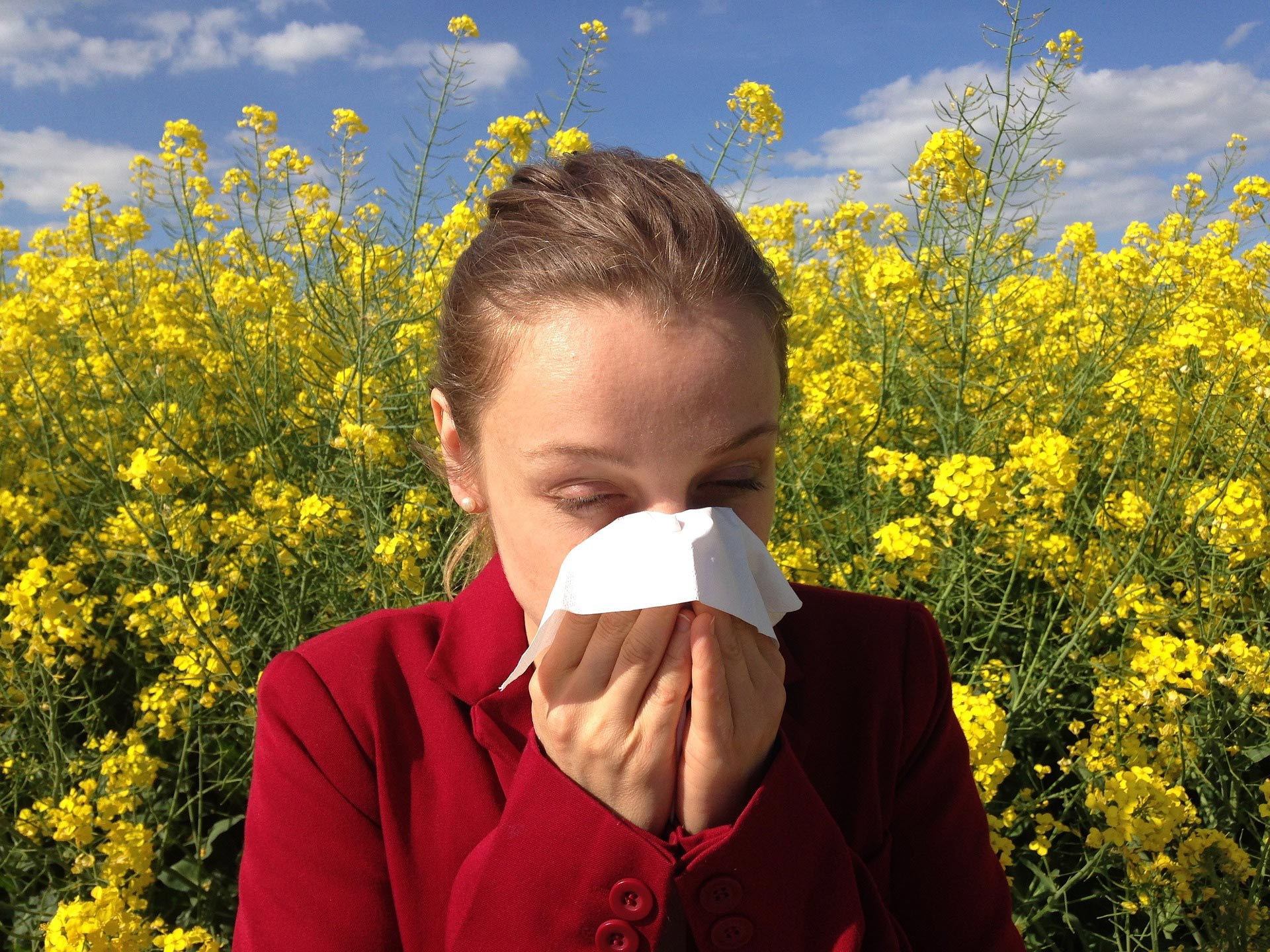 The 'hay fever' season is nearly with us!