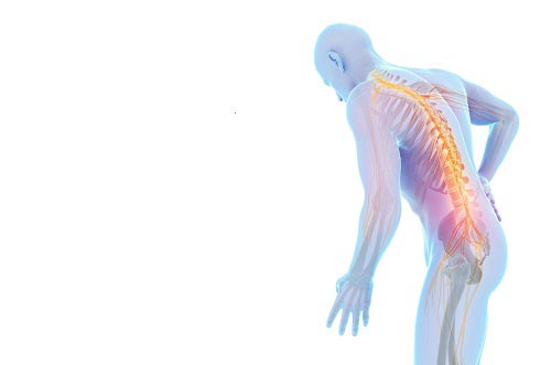 Back pain information evening - Wednesday 18 November